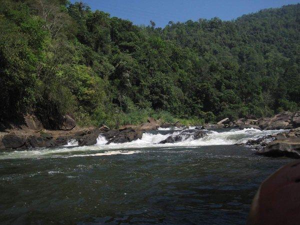 Natur pur im Rafter´s Paradies